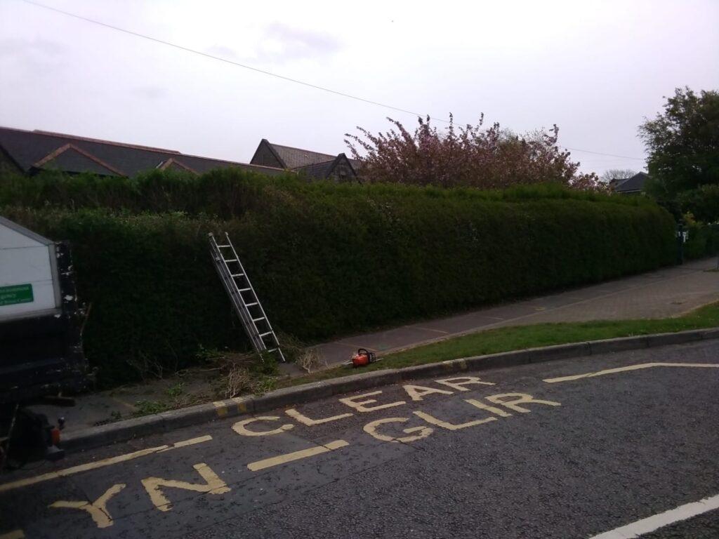 Hedge Trimming Bridgend