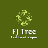 F J Tree and landscapes