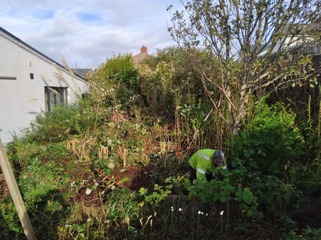 garden clearance Ogmore-by-Sea